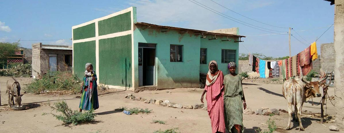 Bulid houses for Local