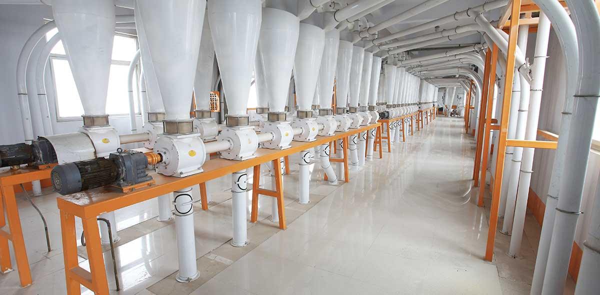 Tajikistan 600TPD Wheat Milling Plant