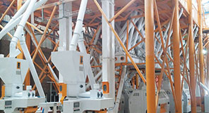 Zambia 200TPD Maize Milling Plant