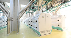 China 1400TPD Wheat Milling Plant