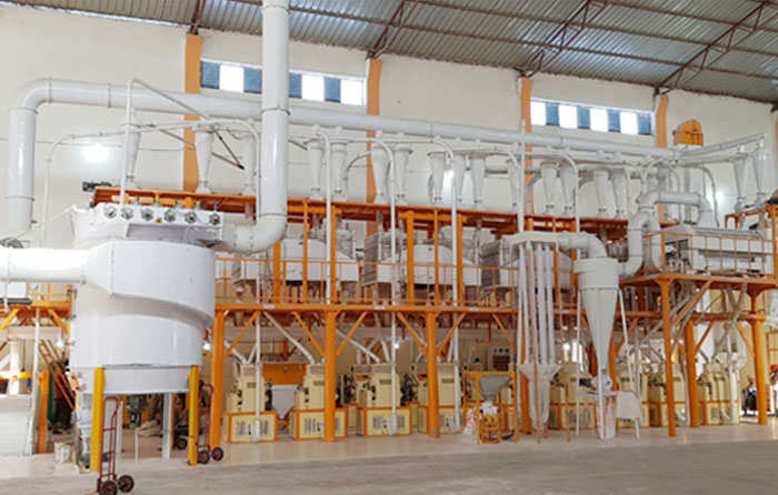 Compact Structure Wheat  Flour Milling Plant