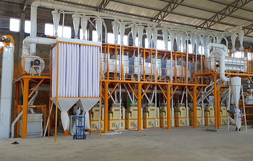 Summary of Flour Milling Machine Installing in Africa Now
