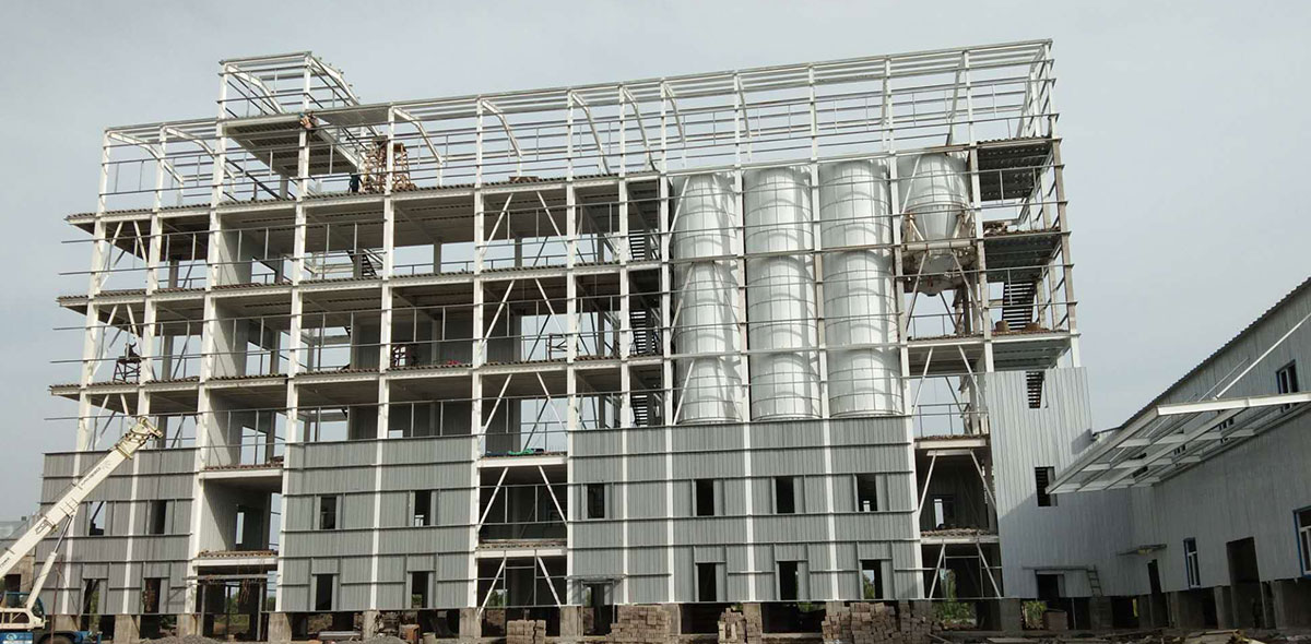 Cameroon 200TPD Wheat Milling Turnkey Project