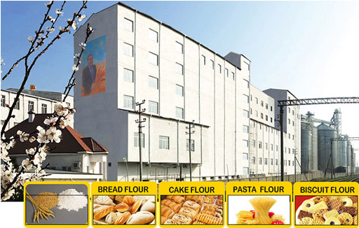 What is the Working Principle of the Flour Machine?